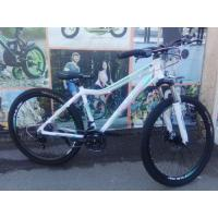 Велосипед PULSE MD600 белый/мятный