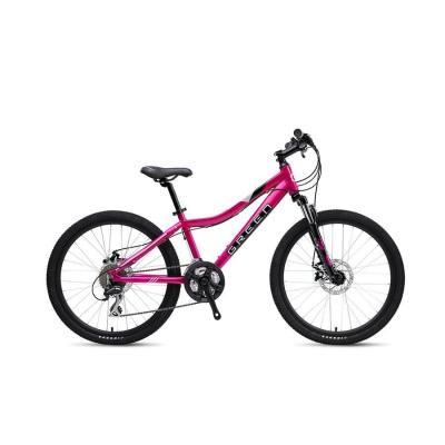 Велосипед GREEN 19 Kids 24 пурпурный